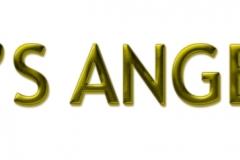 EvosAngels